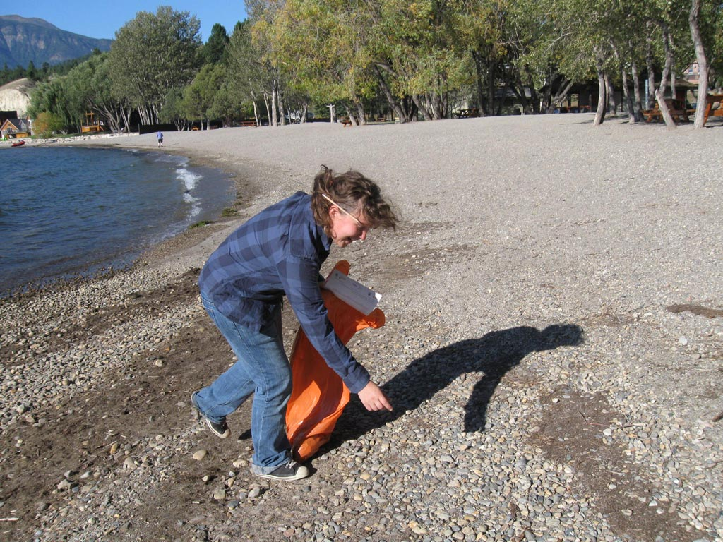 Shoreline Clean-up