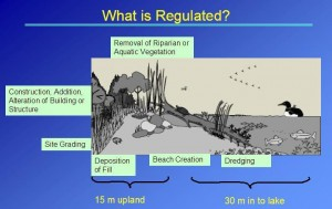 What_is_regulated_2