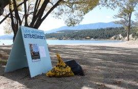 """Fall"" in love with your Shoreline: Lake Windermere Clean-Up"