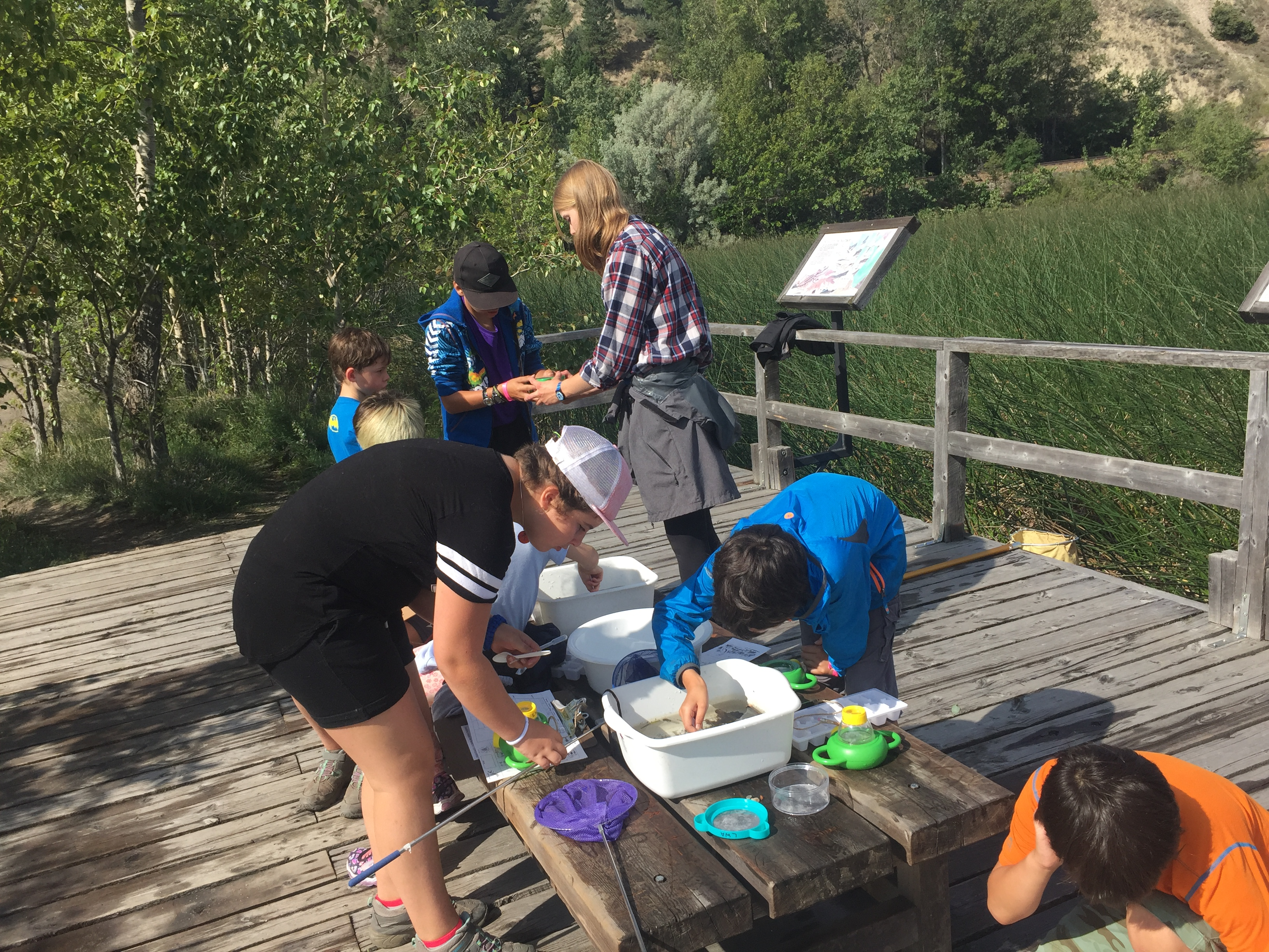 Free Kids Summer Camps
